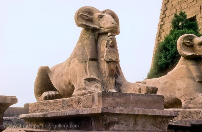 Ram headed sphinx at Karnak.jpg